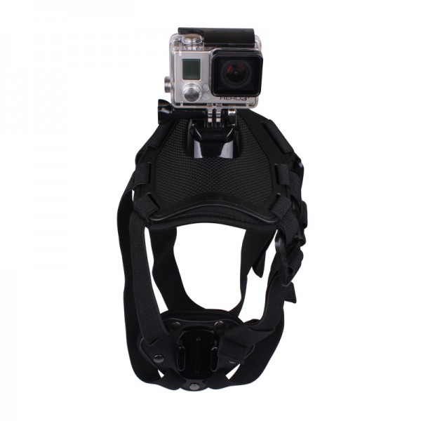 Actioncam Zubehör Dog Mount Harness | camXpert.com